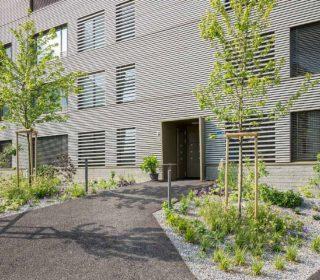 Vorgarten eines Wohnhauses