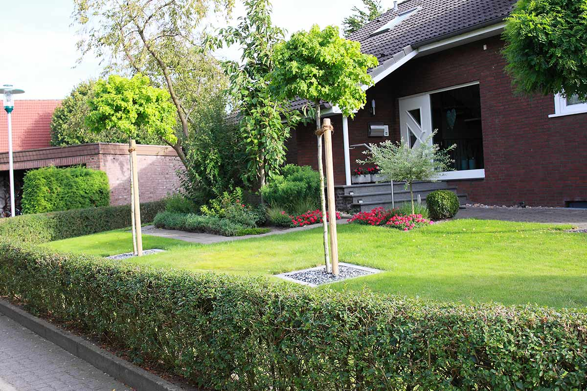 Vorgartengestaltung von zertifizierten galanet betrieben for Kleine straucher vorgarten
