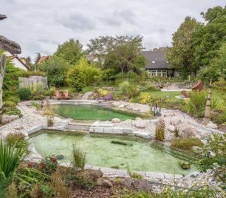 Schwimmteich und Gartenteich