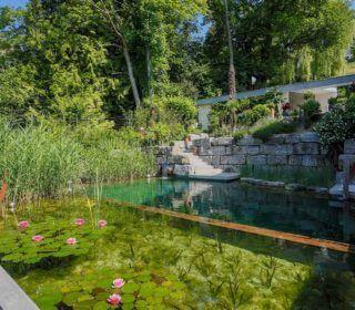 Hanggarten mit Schwimmteich