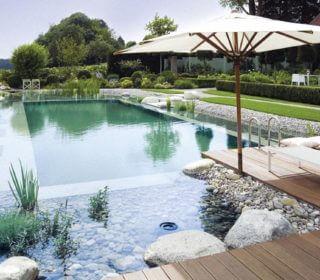 Schwimmteich- und Naturpoolpflege
