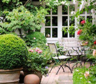 romantische-terasse-mit-pflanzen