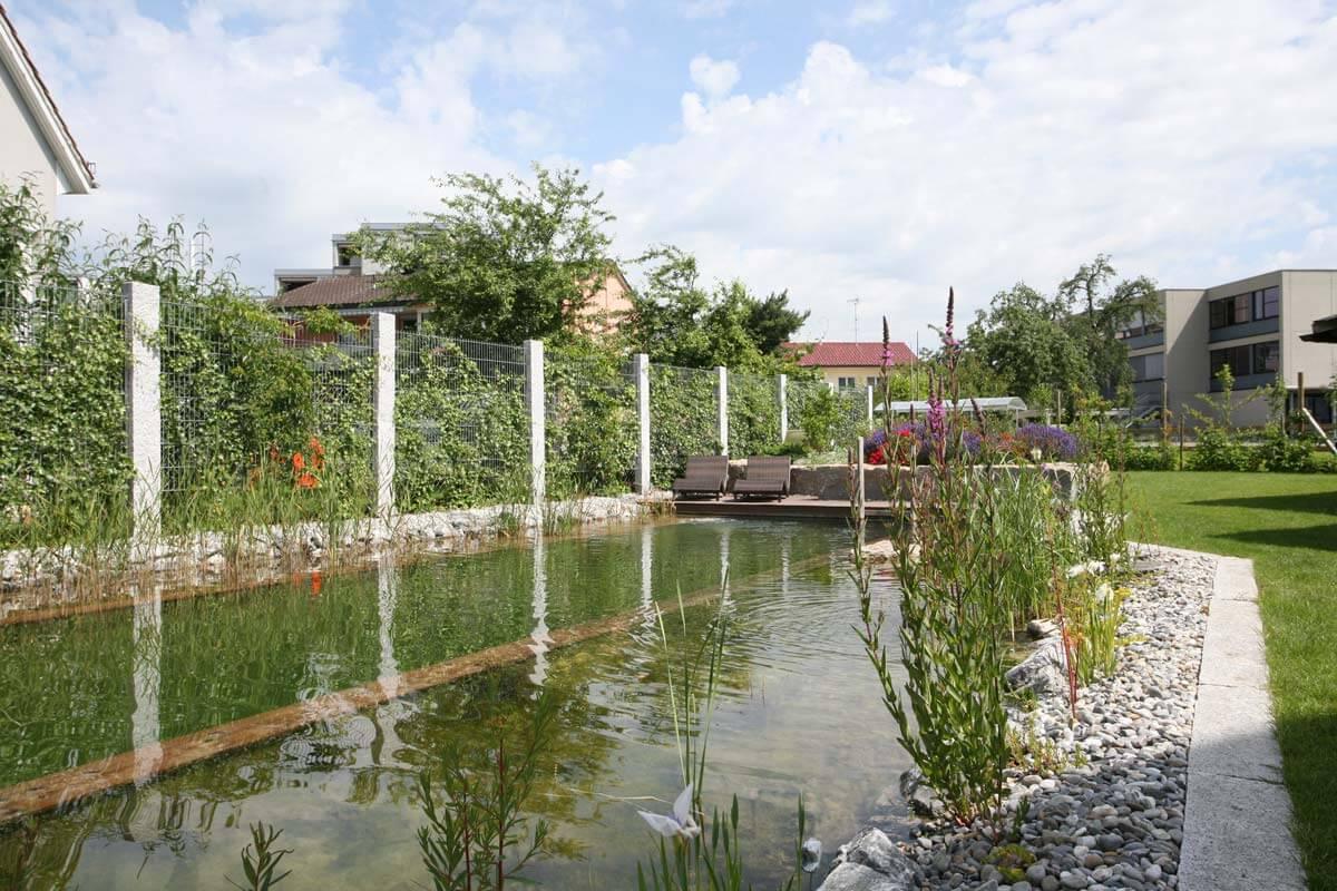 Schwimmteich gebaut und geplant von galanet for Garten schwimmteich