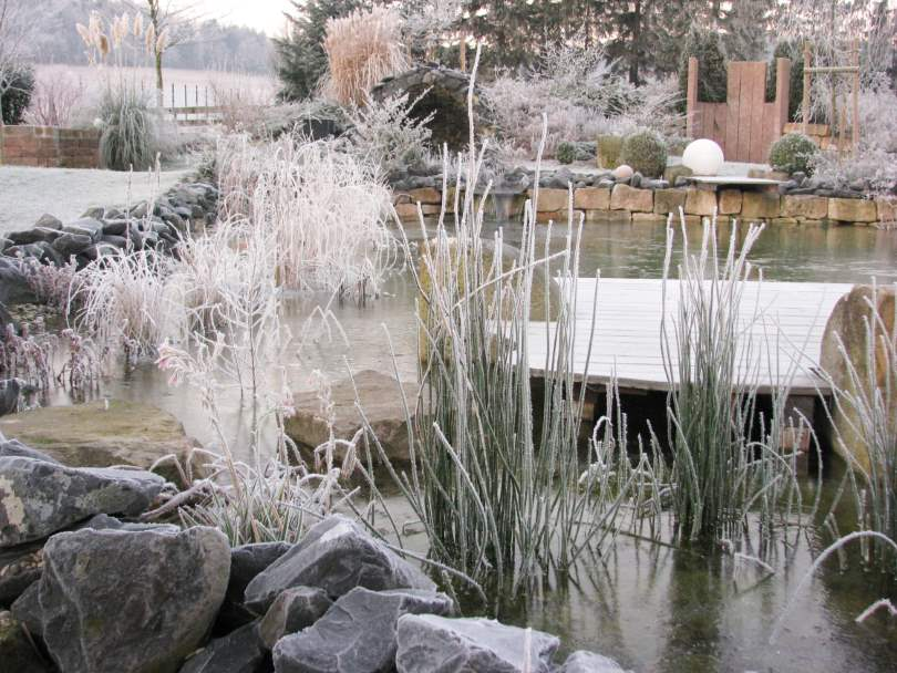 Frost und Rauhreif im Dezember