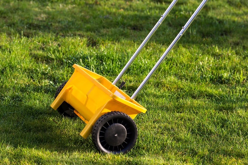 Berühmt Rasendünger: Zusammensetzung, Unterschiede, Anwendung #HW_85