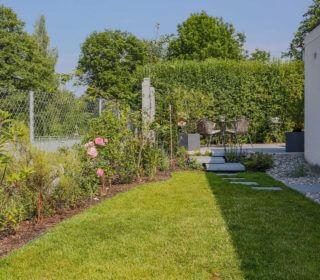 Kleiner Garten mit Rosensträuchern