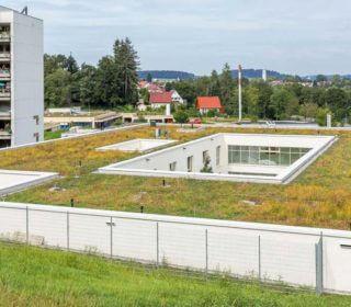 Bepflanzung des Krankenhausdachs