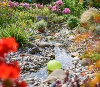 Bachlauf umgeben von passenden Pflanzen