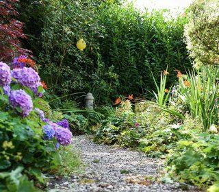 Cottage Garten