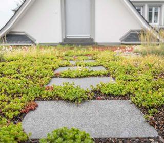 Gartenweg aus Platten