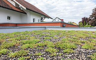 Klassisch und pflegeleicht: die extensive Dachbegrünung