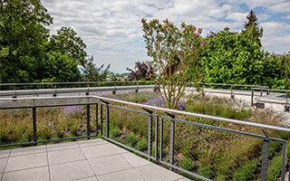 Pflanzenvielfalt pur: die intensive Dachbegrünung (der Dachgarten)