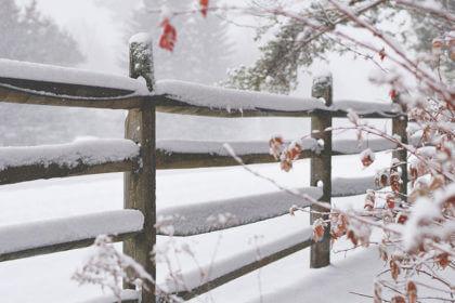 https://www.galanet.org/wp-content/uploads/2021/01/winterbild-thumnail-klein-420x280.jpg