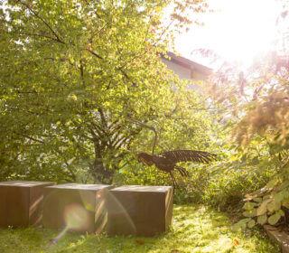 Herbstbepflanzung im Garten